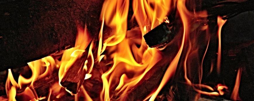 Poêle à bois: Du bon bois pour un bon feu !